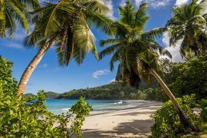 Petit Police Bay Beach, Mahe, Republic of Seychelles, Indian Ocean. by Michael DeFreitas