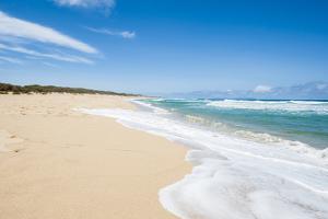 Polihale Beach Polihale State Park, Kauai, Hawaii by Michael DeFreitas