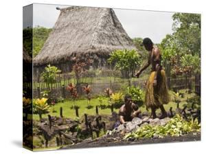 Polynesian Cultural Center, Viti Levu, Fiji, South Pacific, Pacific by Michael DeFreitas
