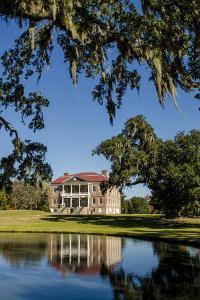 Spanish moss covered tree and plantation house, Charleston, South Carolina. by Michael DeFreitas