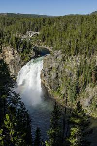 Upper Falls, Yellowstone National Park, Wyoming, United States of America, North America by Michael DeFreitas
