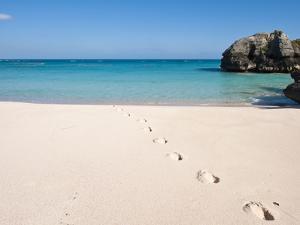 Warwick Long Bay, Jobson's Cove, Bermuda, Central America by Michael DeFreitas