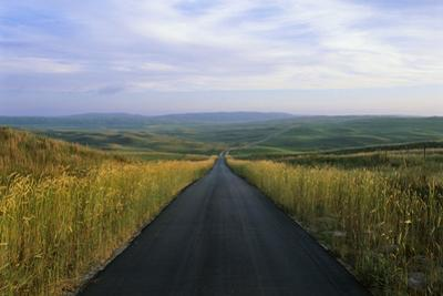 A Paved Road Cuts Through the Remote Sandhills of Nebraska by Michael Forsberg