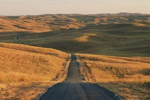 A Road Leads Through a Remote Prairie Landscape by Michael Forsberg