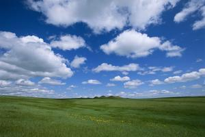 Clouds Hoover over a Bright Green Landscape in the High Plains by Michael Forsberg