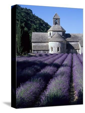 Abbey and Lavender Fields