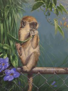 Monkey by Michael Jackson