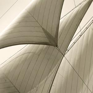Head Sails of a Schooner by Michael Kahn