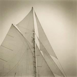 Sails of Friendship Sloop by Michael Kahn
