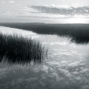 Salt Marsh Reflections by Michael Kahn