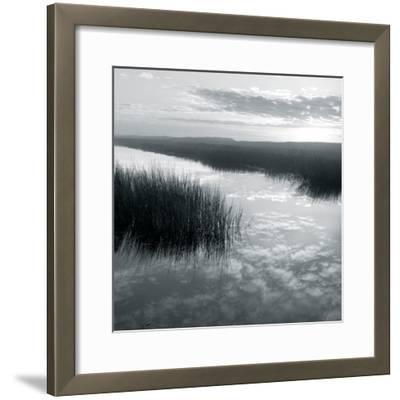Salt Marsh Reflections