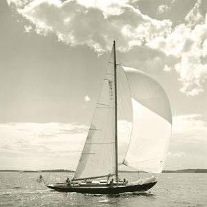 Sunlit Sails II by Michael Kahn