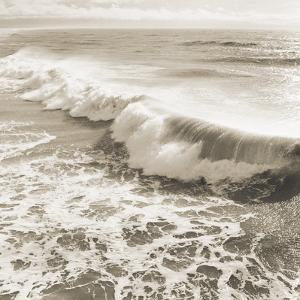 Wave by Michael Kahn