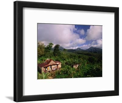 Overhead of House in Rainforest, Roseau Valley, Dominica