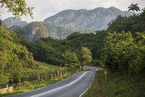 A Highway Running from Vinales to San Cayetano Through a Region known for Tobacco Farms by Michael Lewis