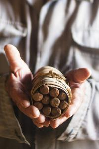A Tobacco Grower Holds a Bundle of Cigars Hand-Rolled from the Tobacco Growing in His Shed by Michael Lewis