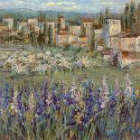 Provencal Village-Michael Longo-Premium Giclee Print