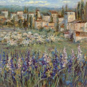 Provencal Village I by Michael Longo