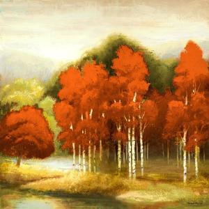 Autumn Birchwood I by Michael Marcon
