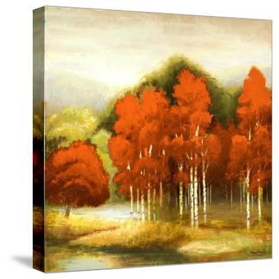 Autumn Birchwood I
