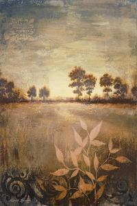 Distant Season by Michael Marcon