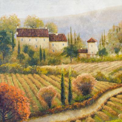 Tuscany Vineyard I