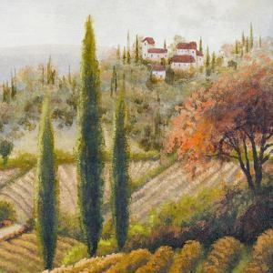 Tuscany Vineyard II by Michael Marcon