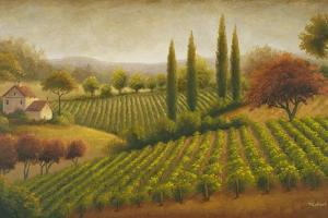Vineyard in the Sun I by Michael Marcon