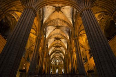 A View of the Columns and Vaulted Ceiling of the Catedral De Barcelona by Michael Melford