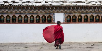 A Young Monk Walking Through a Monastery