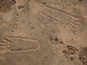 Ancient Footprints in the Sandstone on Socotra Island by Michael Melford