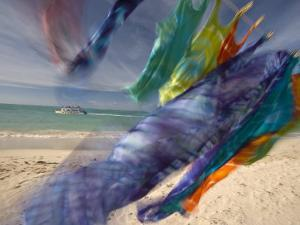 Colorful Laundry on a Windy Day at Pigeon Point by Michael Melford