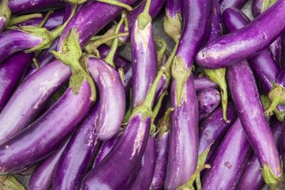 Eggplant for Sale in a Street Market by Michael Melford