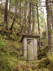 Outhouse in a Moss Covered Forest by Michael Melford