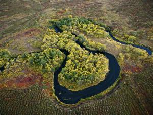 Salmon spawn in Kronotsky Nature Reserve's clear running rivers by Michael Melford