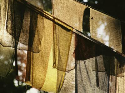 Sunlight Filters Through Prayer Flags Hanging in Kathmandu by Michael Melford
