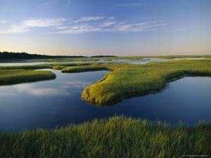 Tidal Flats of Nauset Marsh in Eastham by Michael Melford