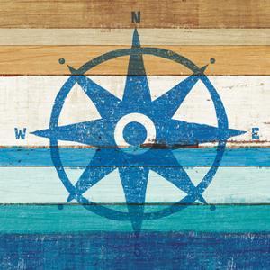 Beachscape IV Compass by Michael Mullan
