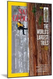Cover of the December, 2012 National Geographic Magazine by Michael Nichols