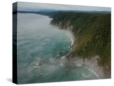 The Fog Covered Redwood Coast at Del Norte Coast Redwoods State Park