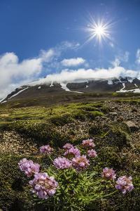 A View of the Stratovolcano Snaefellsjokull, Snaefellsnes National Park, Snaefellsnes Peninsula by Michael Nolan