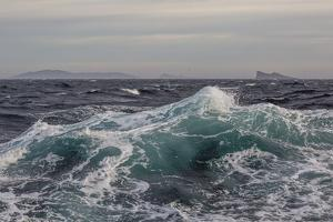 High Winds and Heavy Seas on Approach to the New Island Nature Reserve, Falkland Islands by Michael Nolan