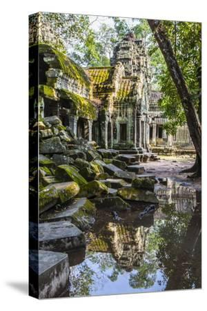 Reflections at Ta Prohm Temple (Rajavihara)