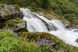 Slow Shutter Speed Silky Water of the Olden River as it Flows Along Briksdalen by Michael Nolan
