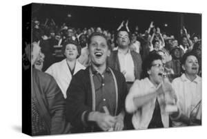 Chicago Fans Cheer White Sox at Comiskey Park by Michael Rougier