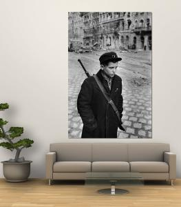 Hungarian Freedom Fighter During Revolution Against Soviet Backed Government by Michael Rougier