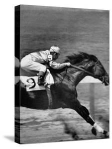 """Jockey Willie Shoemaker Racing """"Our John William"""" by Michael Rougier"""