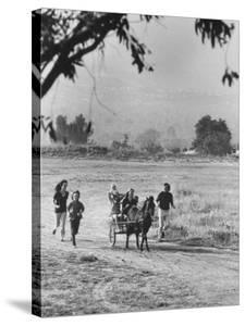 Louie Elias and Family, Riding in Their Pony Cart by Michael Rougier
