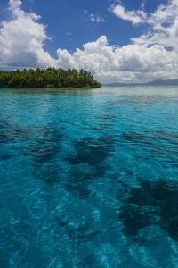 Ant Atoll, Pohnpei, Micronesia by Michael Runkel