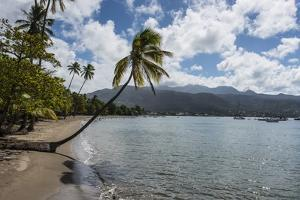 Beach in Prince Rupert Bay, Dominica, West Indies, Caribbean, Central America by Michael Runkel